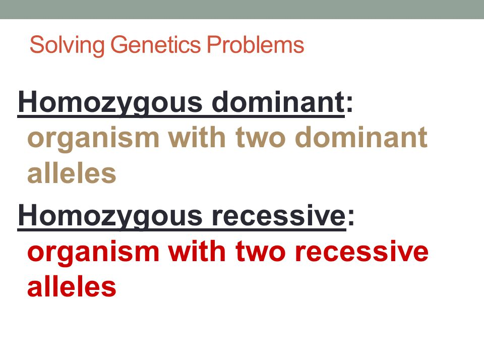 Solving Genetics Problems Homozygous: organism with two identical alleles for a trait Heterozygous: organism with two different alleles for a trait