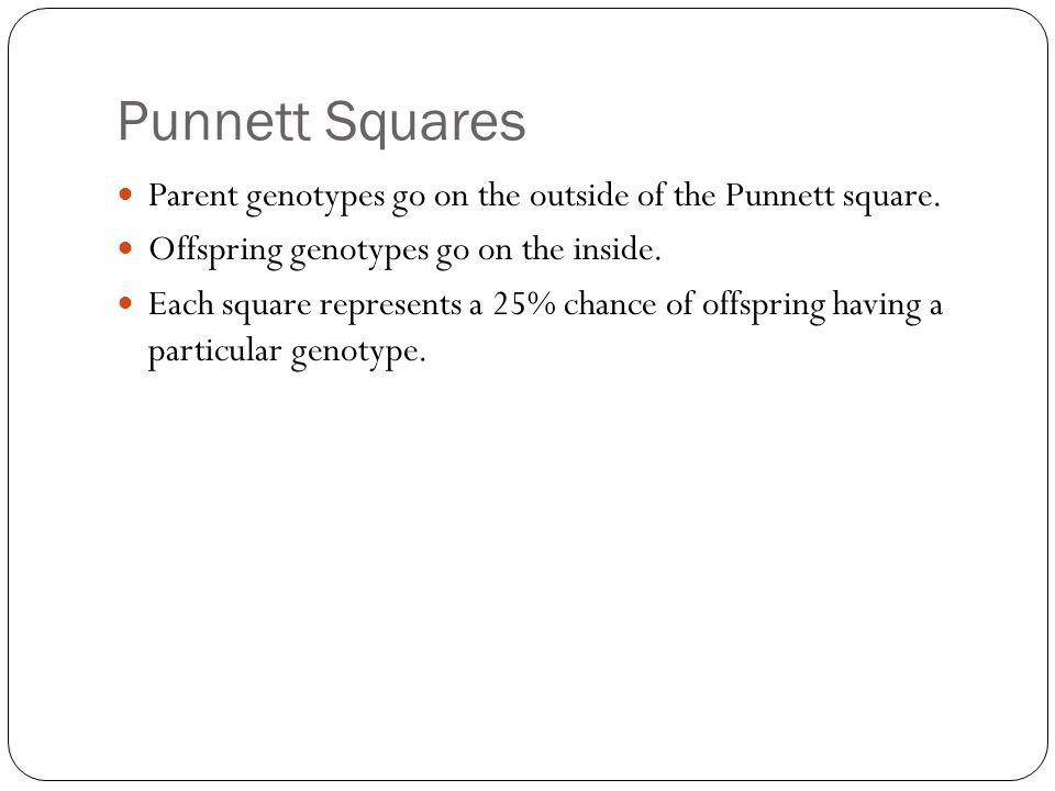 Punnett Squares Parent genotypes go on the outside of the Punnett square.