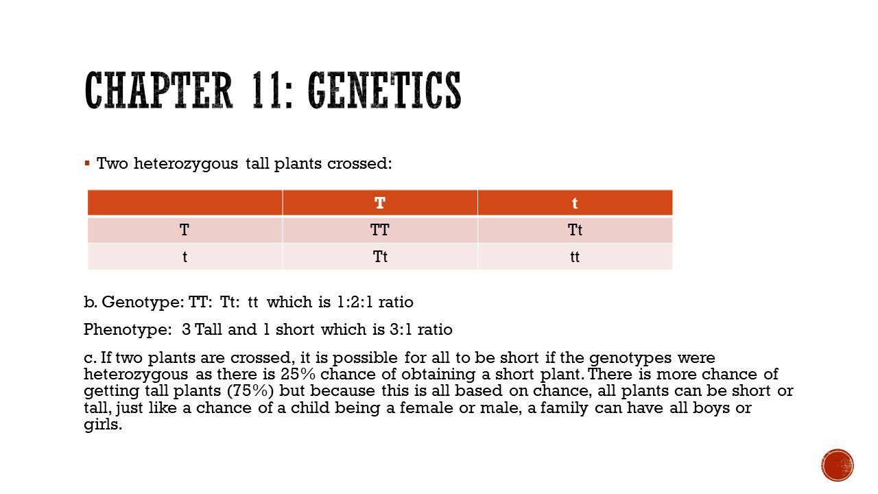  Two heterozygous tall plants crossed: b. Genotype: TT: Tt: tt which is 1:2:1 ratio Phenotype: 3 Tall and 1 short which is 3:1 ratio c. If two plants