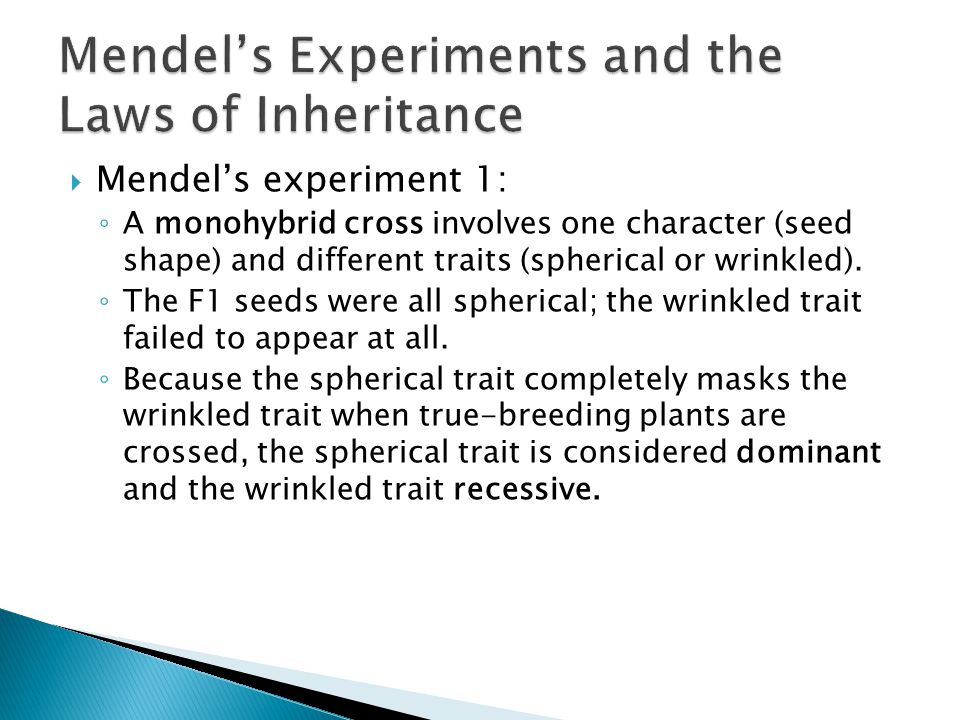  Mendel's experiment 1: ◦ A monohybrid cross involves one character (seed shape) and different traits (spherical or wrinkled).