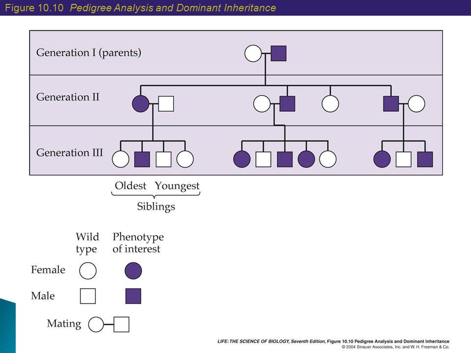 Figure 10.10 Pedigree Analysis and Dominant Inheritance