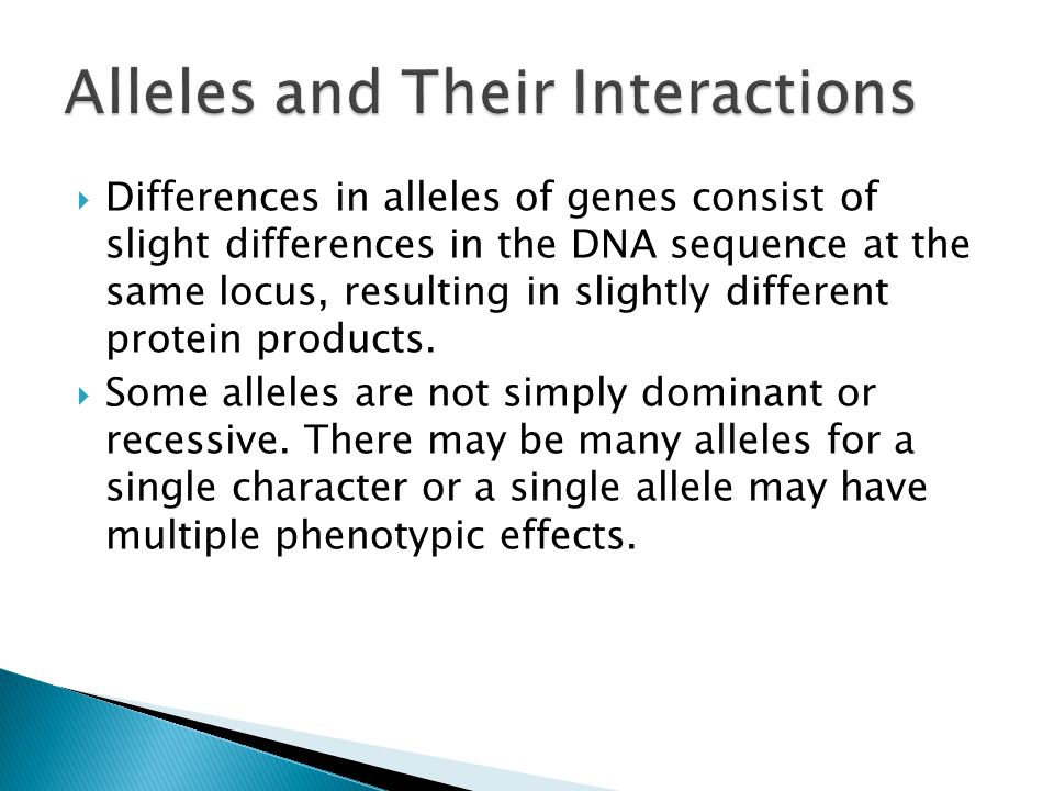  Differences in alleles of genes consist of slight differences in the DNA sequence at the same locus, resulting in slightly different protein products.