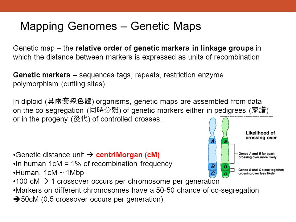 Mapping Genomes – Genetic Maps Genetic map – the relative order of genetic markers in linkage groups in which the distance between markers is expresse
