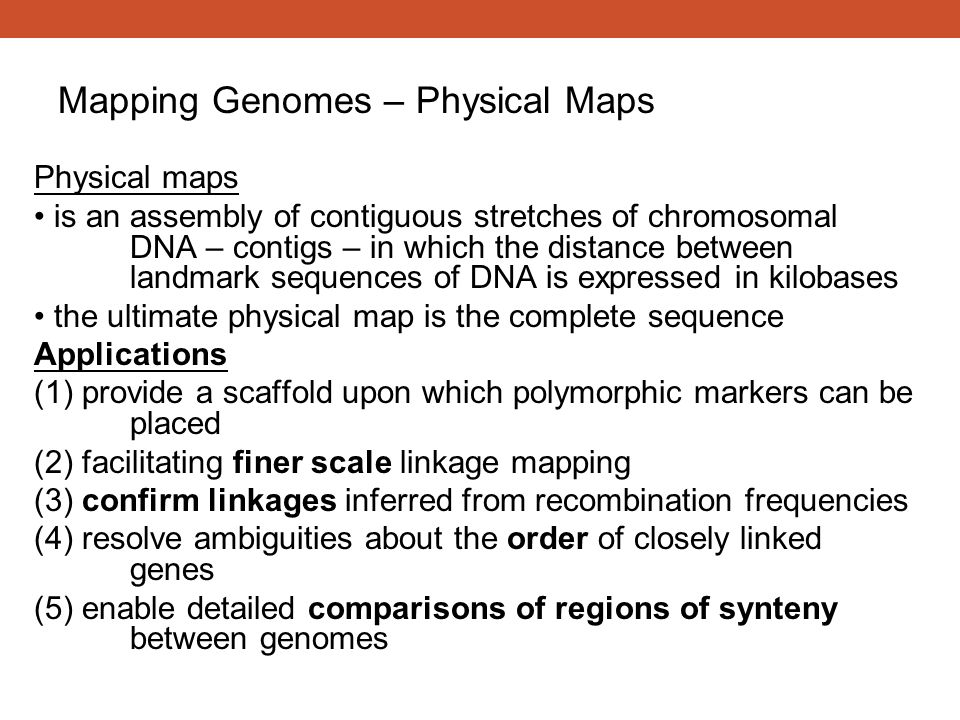 Physical maps is an assembly of contiguous stretches of chromosomal DNA – contigs – in which the distance between landmark sequences of DNA is express