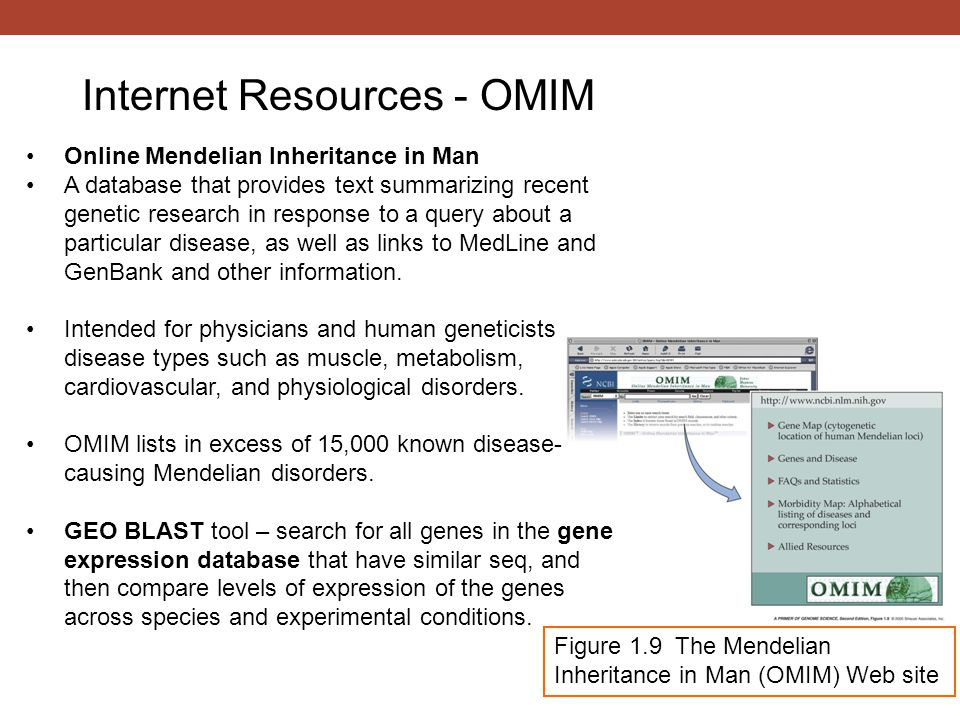 Internet Resources - OMIM Figure 1.9 The Mendelian Inheritance in Man (OMIM) Web site Online Mendelian Inheritance in Man A database that provides tex