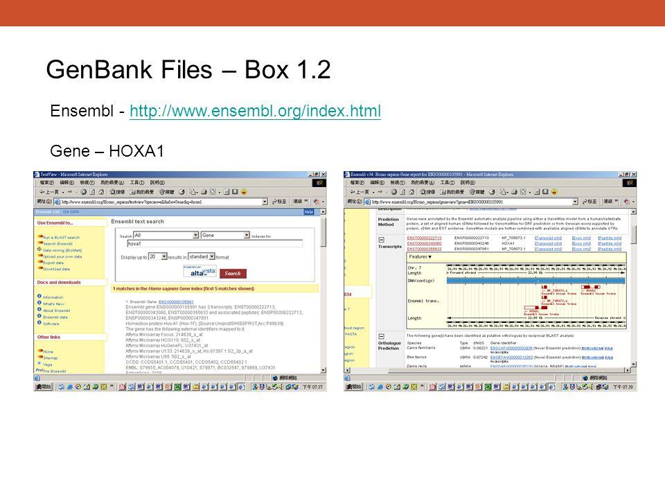 GenBank Files – Box 1.2 Ensembl - http://www.ensembl.org/index.htmlhttp://www.ensembl.org/index.html Gene – HOXA1
