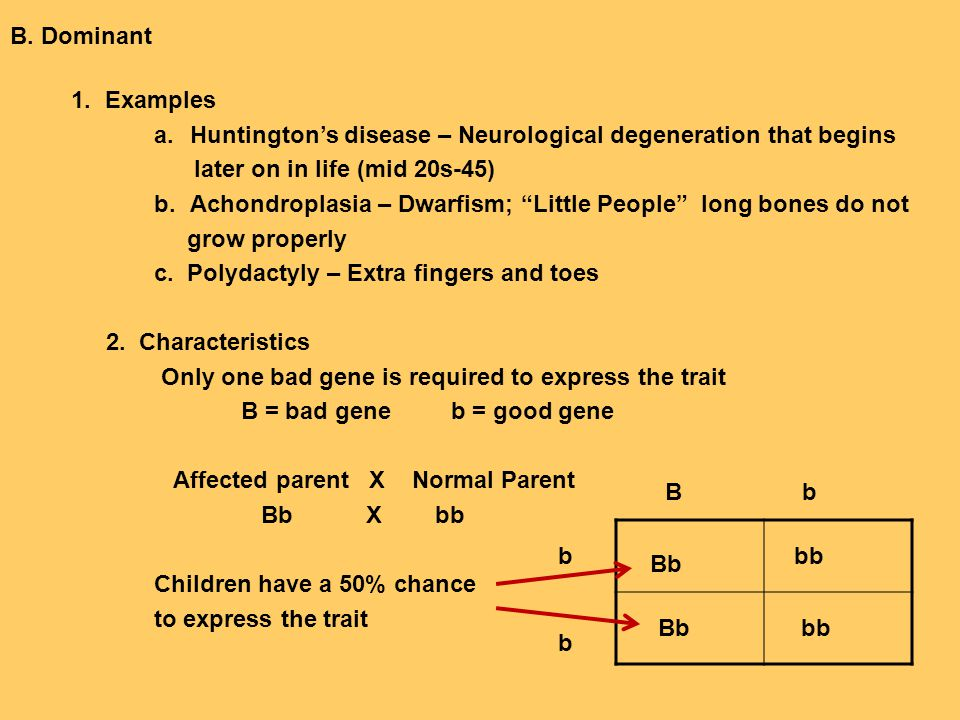 """B. Dominant 1. Examples a.Huntington's disease – Neurological degeneration that begins later on in life (mid 20s-45) b.Achondroplasia – Dwarfism; """"Lit"""