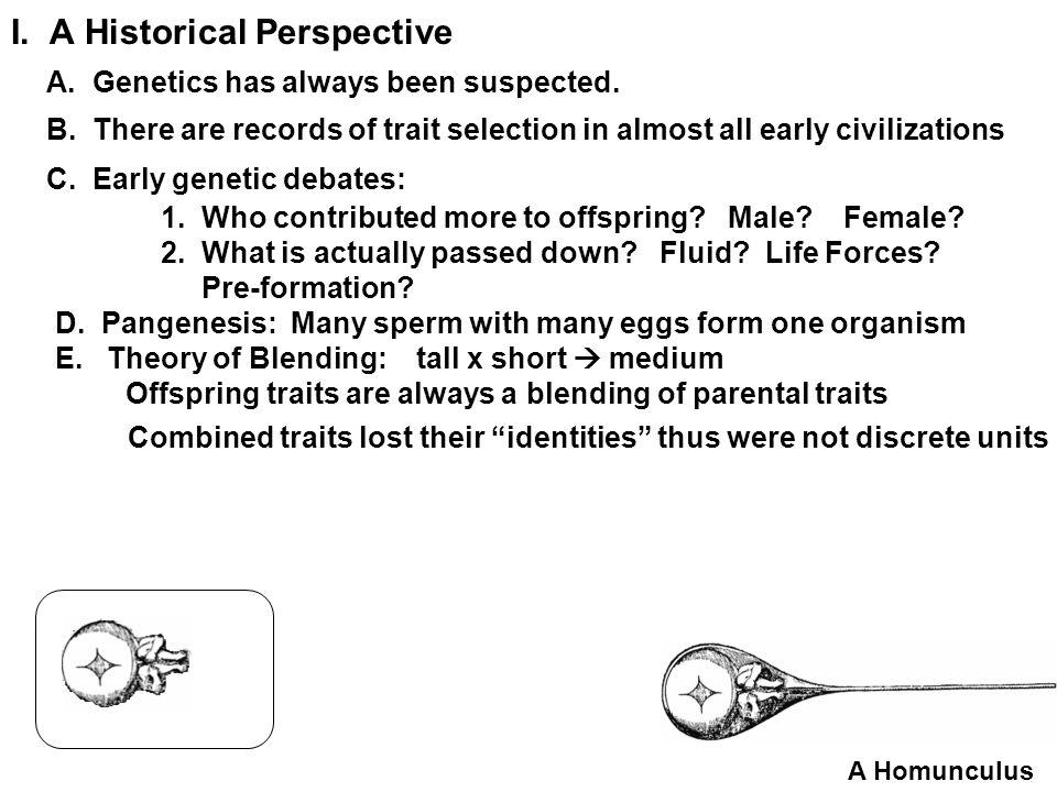E.Polygenic Traits: 1.Characteristics a. Show a wide distribution of traits over a gradient b.