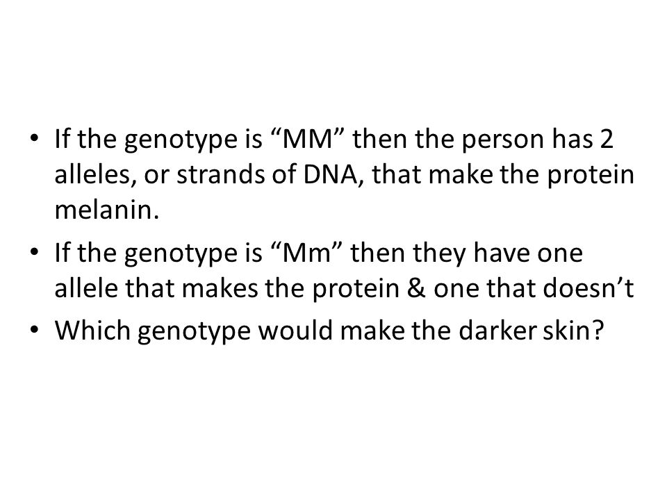 """If the genotype is """"MM"""" then the person has 2 alleles, or strands of DNA, that make the protein melanin. If the genotype is """"Mm"""" then they have one al"""