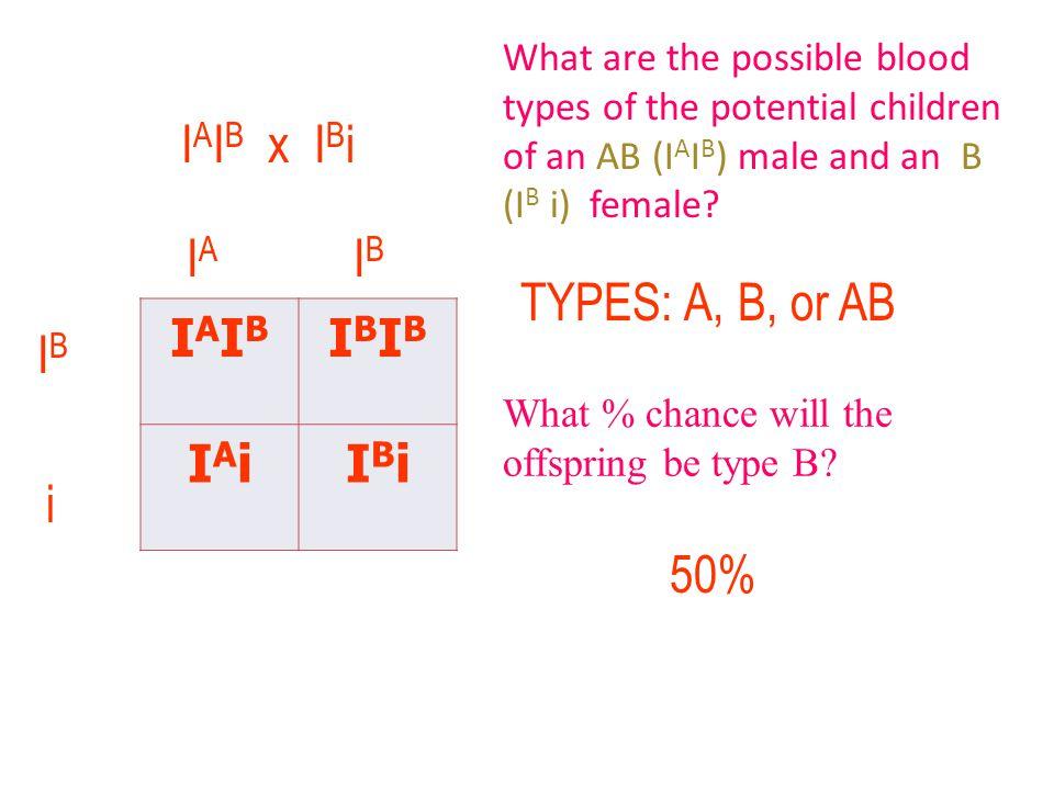 IAIBIAIB IBIBIBIB IAiIAiIBiIBi I A I B x I B i IAIA IBIB IBIB i TYPES: A, B, or AB 50% What are the possible blood types of the potential children of