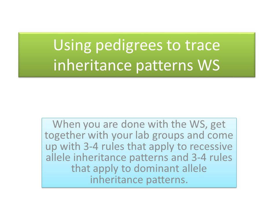 Using pedigrees to trace inheritance patterns WS When you are done with the WS, get together with your lab groups and come up with 3-4 rules that appl