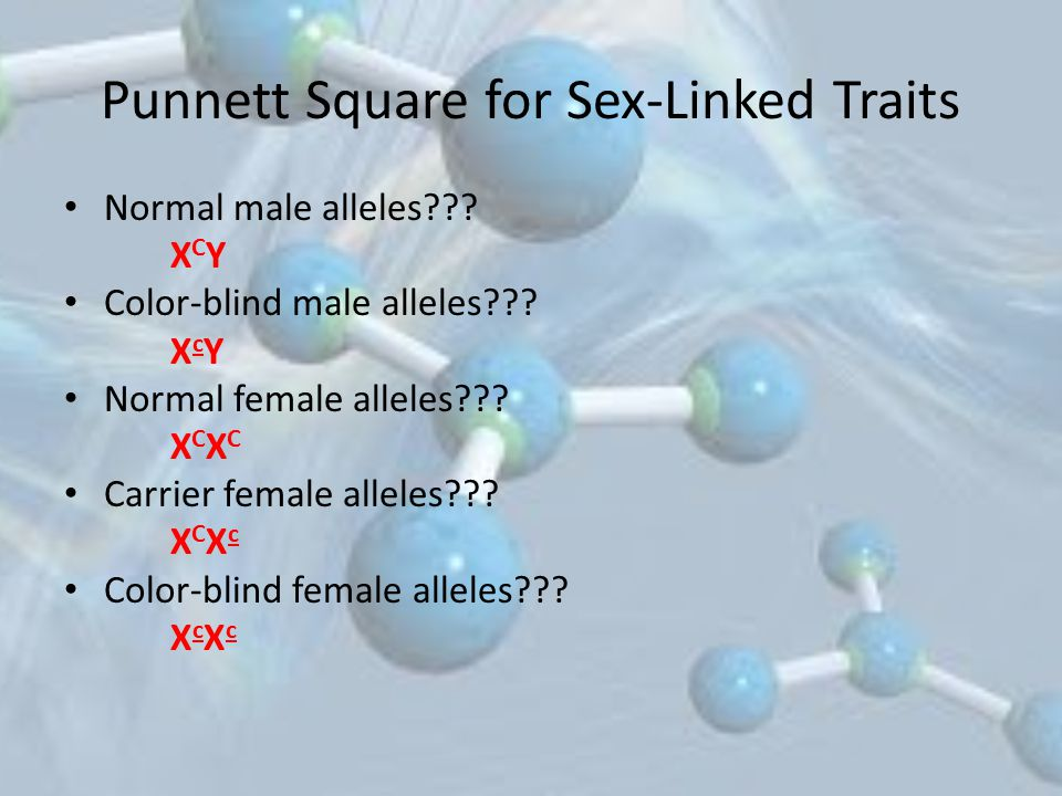 Punnett Square for Sex-Linked Traits Normal male alleles??? XCYXCY Color-blind male alleles??? XcYXcY Normal female alleles??? XCXCXCXC Carrier female