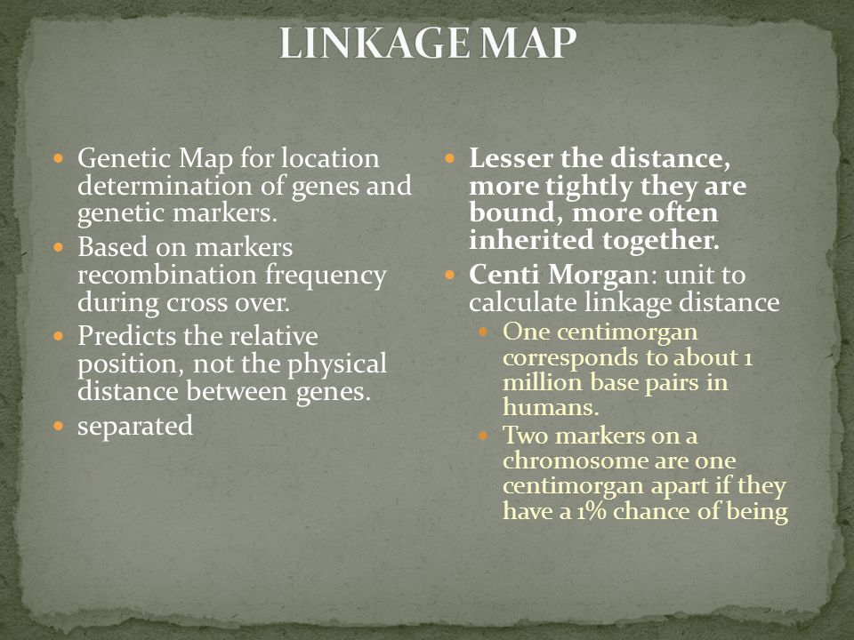 Genetic Map for location determination of genes and genetic markers.