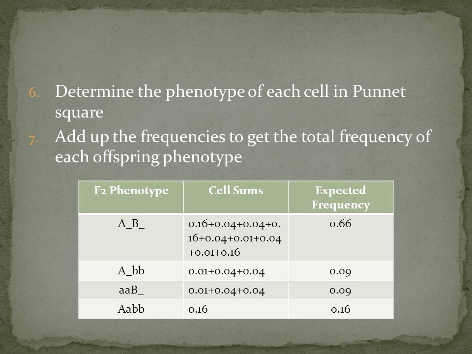 6. Determine the phenotype of each cell in Punnet square 7.