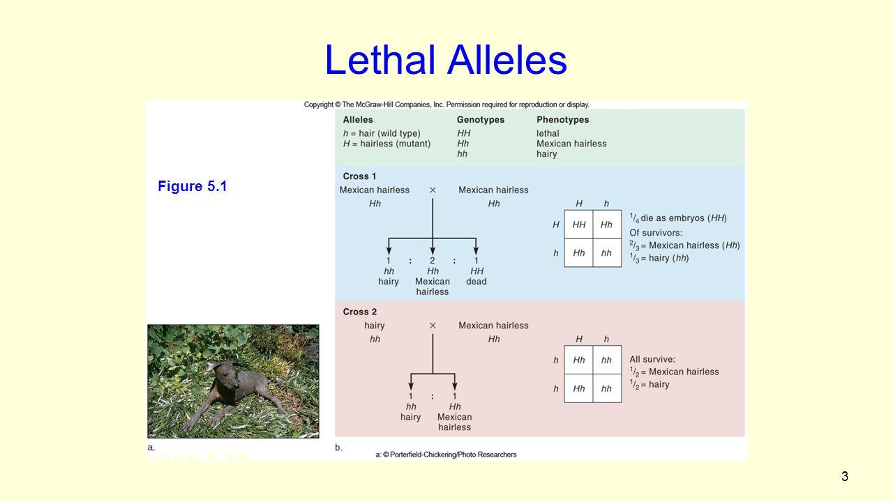 34 Figure 5.15 Linkage versus Non-linkage