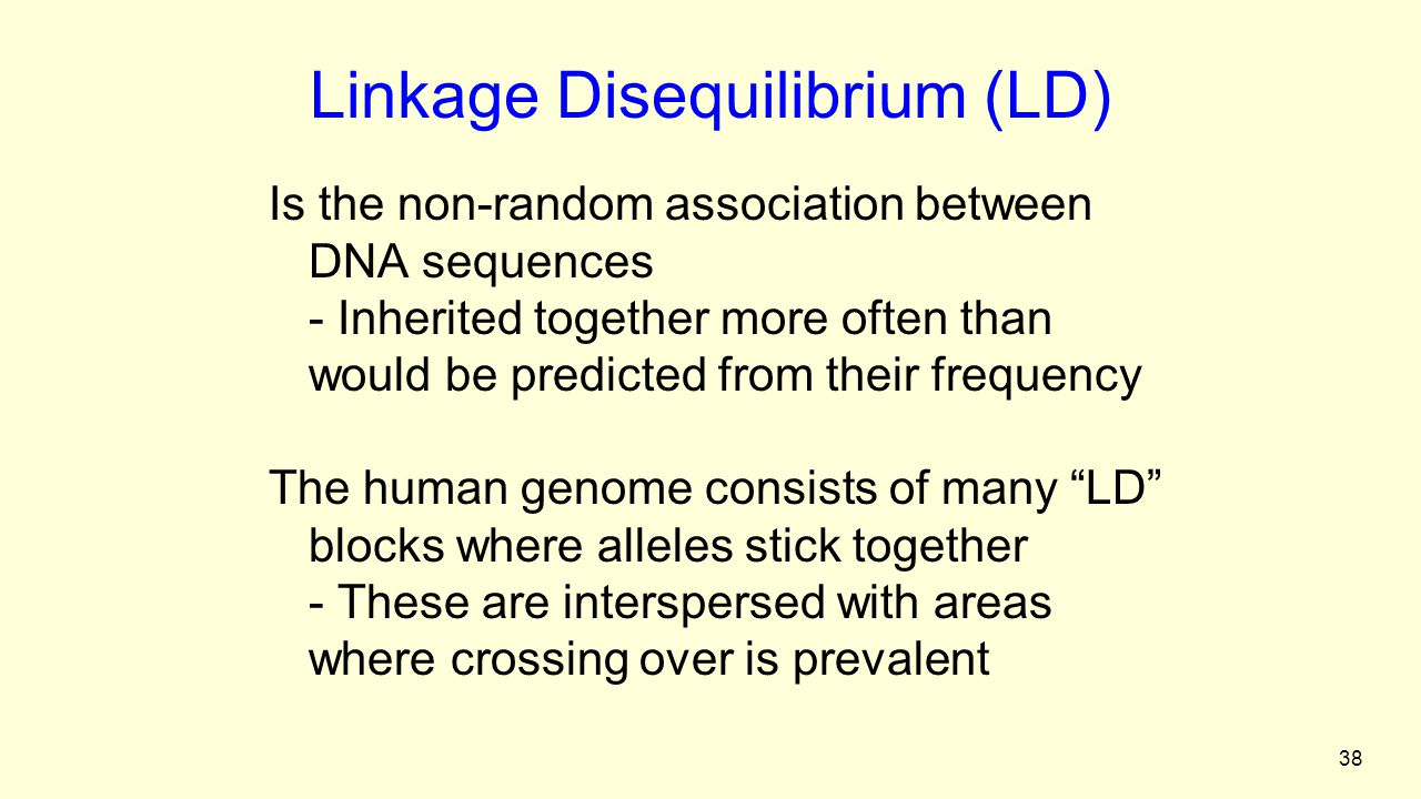 38 Linkage Disequilibrium (LD) Is the non-random association between DNA sequences - Inherited together more often than would be predicted from their frequency The human genome consists of many LD blocks where alleles stick together - These are interspersed with areas where crossing over is prevalent