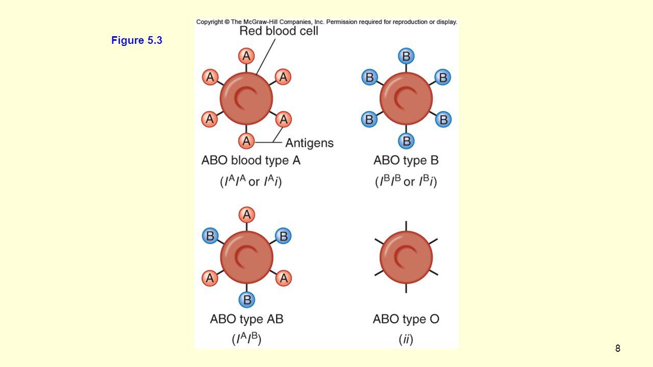 8 Figure 5.3