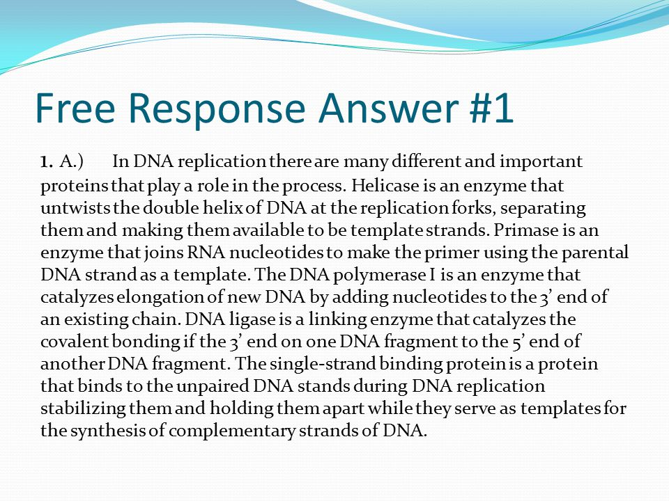 Free Response Answer #1 1. A.) In DNA replication there are many different and important proteins that play a role in the process. Helicase is an enzy