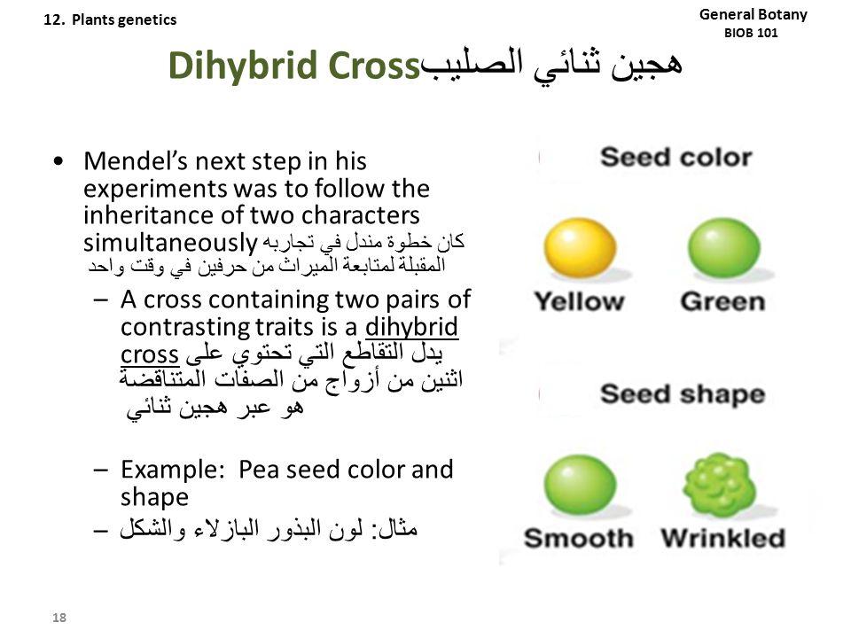 هجين ثنائي الصليب Dihybrid Cross Mendel's next step in his experiments was to follow the inheritance of two characters simultaneously كان خطوة مندل في
