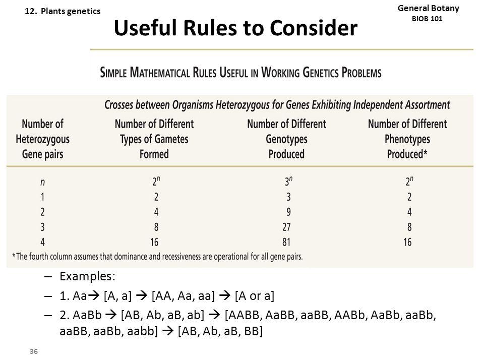 Useful Rules to Consider – Examples: – 1. Aa  [A, a]  [AA, Aa, aa]  [A or a] – 2. AaBb  [AB, Ab, aB, ab]  [AABB, AaBB, aaBB, AABb, AaBb, aaBb, aa