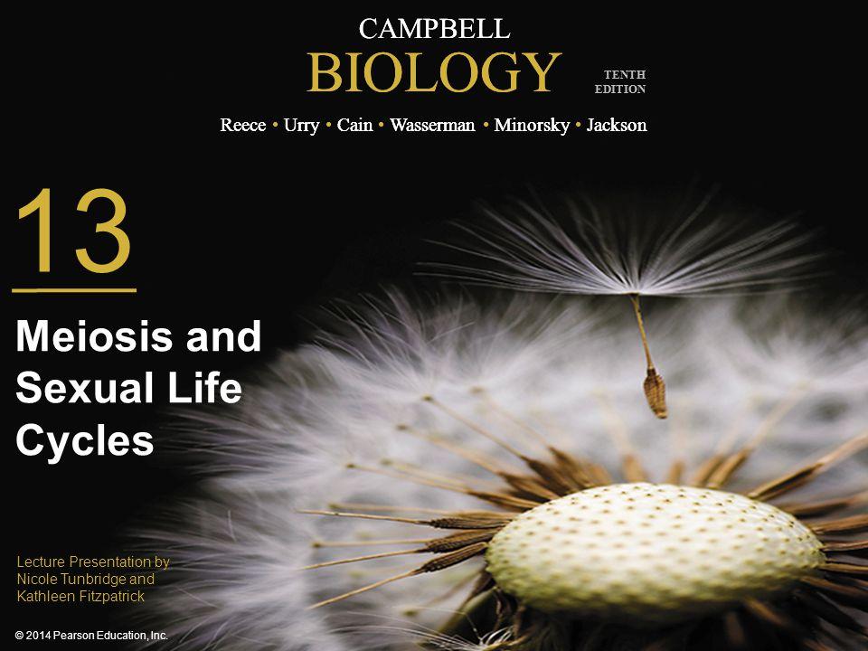 CAMPBELL BIOLOGY Reece Urry Cain Wasserman Minorsky Jackson © 2014 Pearson Education, Inc. TENTH EDITION CAMPBELL BIOLOGY Reece Urry Cain Wasserman Mi