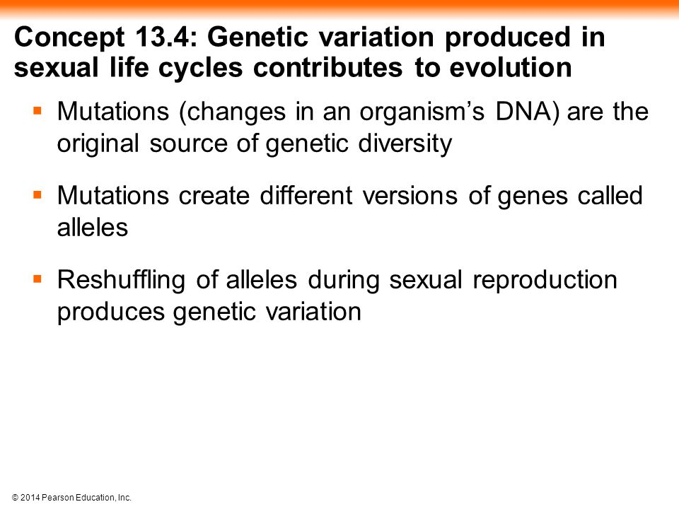 © 2014 Pearson Education, Inc. Concept 13.4: Genetic variation produced in sexual life cycles contributes to evolution  Mutations (changes in an orga