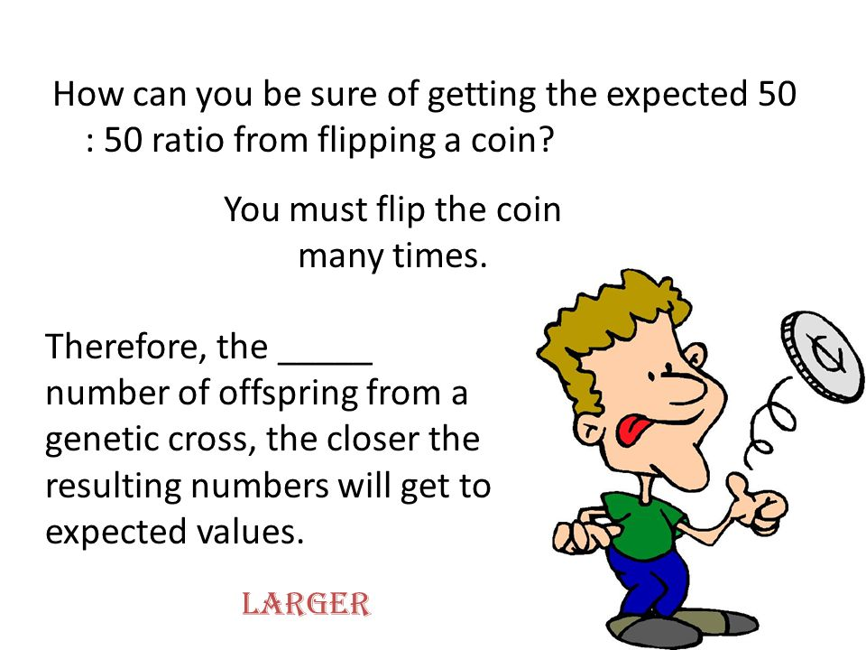 How can you be sure of getting the expected 50 : 50 ratio from flipping a coin? You must flip the coin many times. Therefore, the _____ number of offs