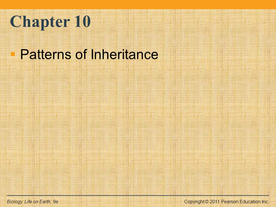 Copyright © 2011 Pearson Education Inc.Biology: Life on Earth, 9e Chapter 10  Patterns of Inheritance