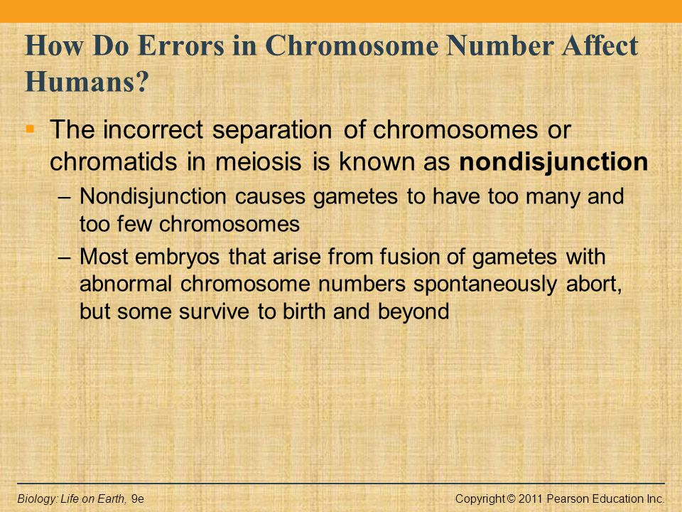 Copyright © 2011 Pearson Education Inc.Biology: Life on Earth, 9e How Do Errors in Chromosome Number Affect Humans?  The incorrect separation of chro