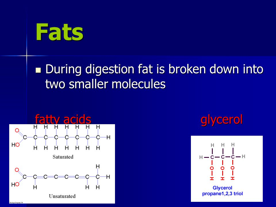 Fats During digestion fat is broken down into two smaller molecules During digestion fat is broken down into two smaller molecules fatty acidsglycerol