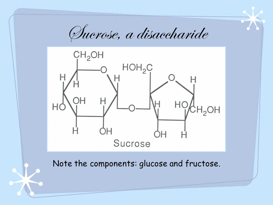 Sucrose, a disaccharide Note the components: glucose and fructose.