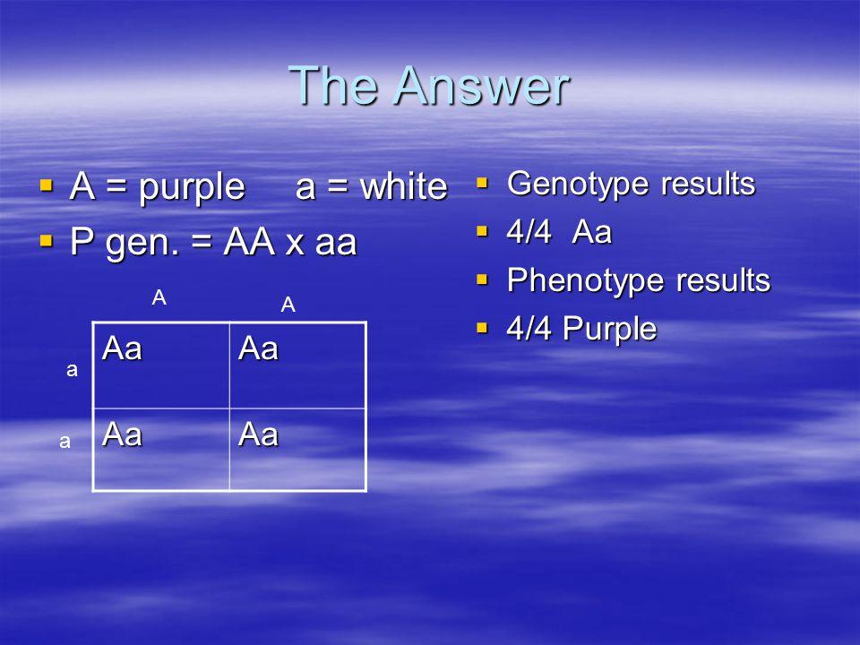 The Answer  A = purplea = white  P gen.