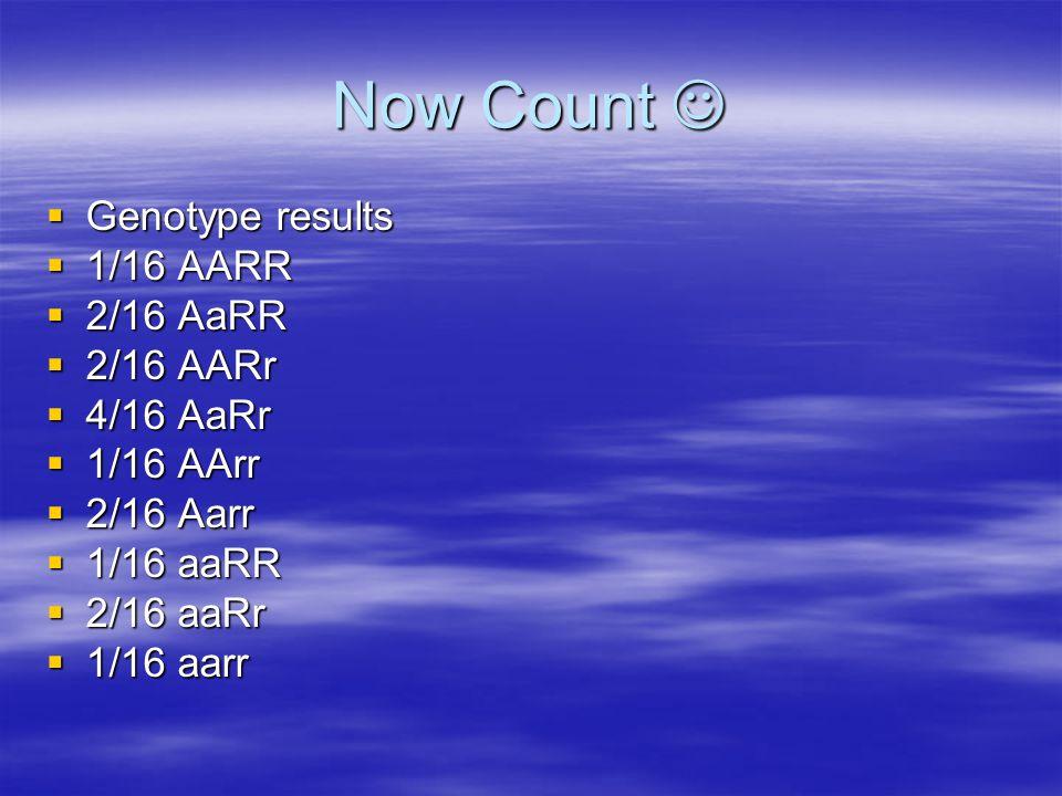 Now Count Now Count  Genotype results  1/16 AARR  2/16 AaRR  2/16 AARr  4/16 AaRr  1/16 AArr  2/16 Aarr  1/16 aaRR  2/16 aaRr  1/16 aarr