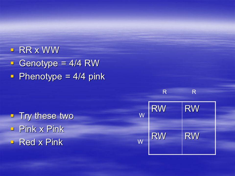  RR x WW  Genotype = 4/4 RW  Phenotype = 4/4 pink  Try these two  Pink x Pink  Red x Pink RWRW RWRW RR W W