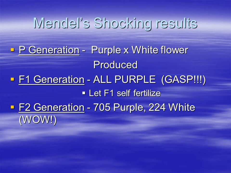 Mendel's Shocking results  P Generation - Purple x White flower Produced  F1 Generation - ALL PURPLE (GASP!!!)  Let F1 self fertilize  F2 Generation - 705 Purple, 224 White (WOW!)
