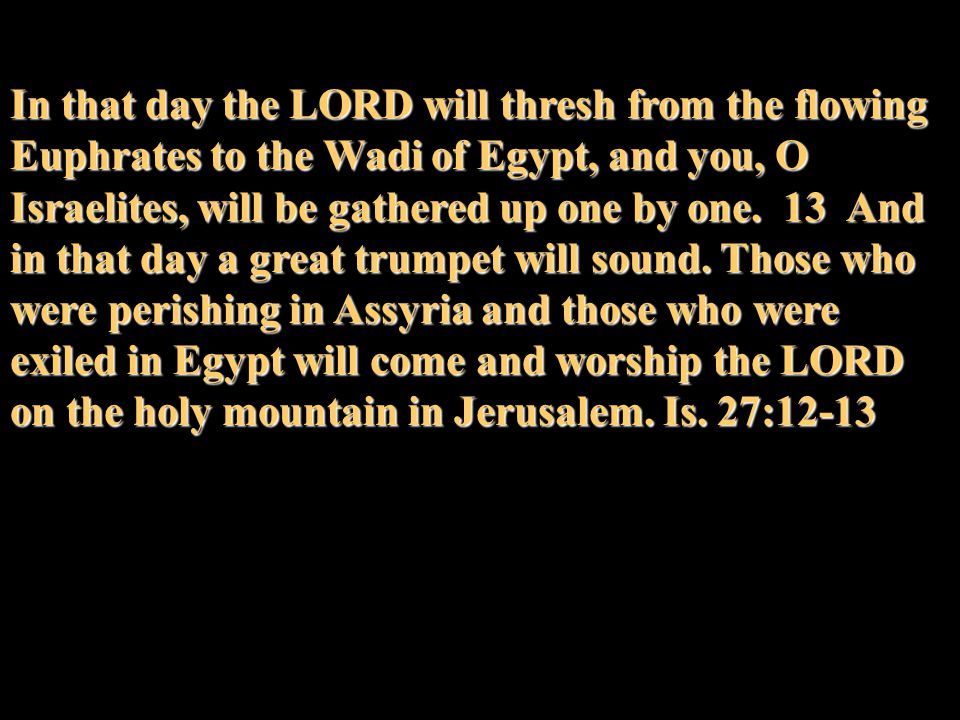 In that day the LORD will thresh from the flowing Euphrates to the Wadi of Egypt, and you, O Israelites, will be gathered up one by one.