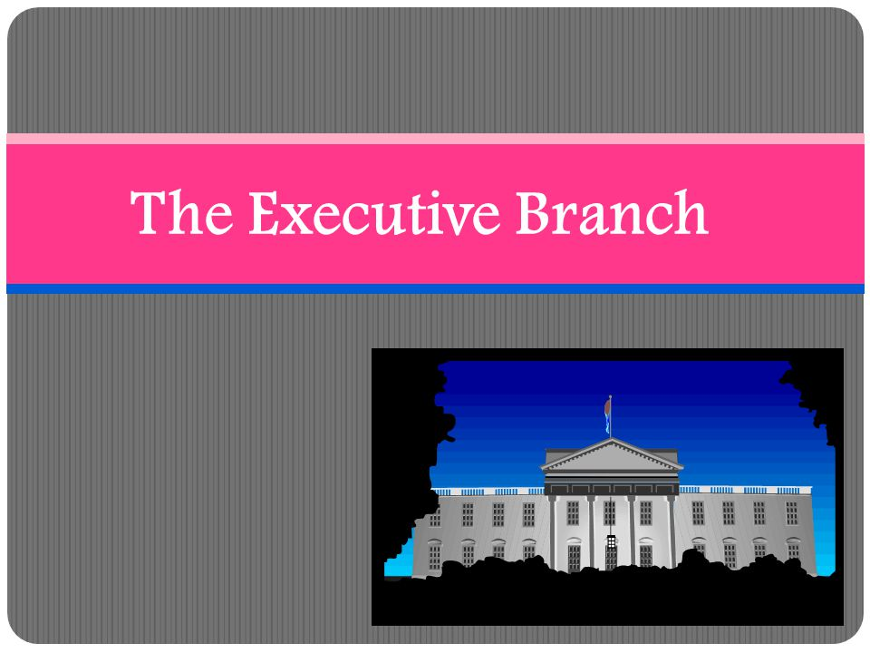 Executive Departments Heads of the Executive Departments make up the President's Cabinet