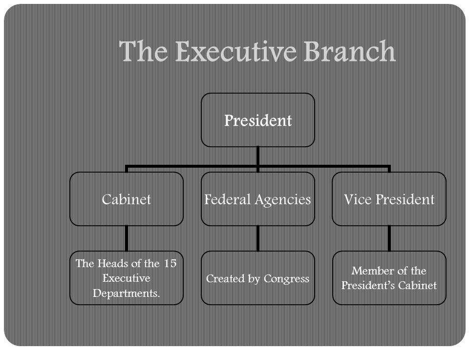 The Executive Branch influences policymaking (laws) by: Approving or Vetoing bills