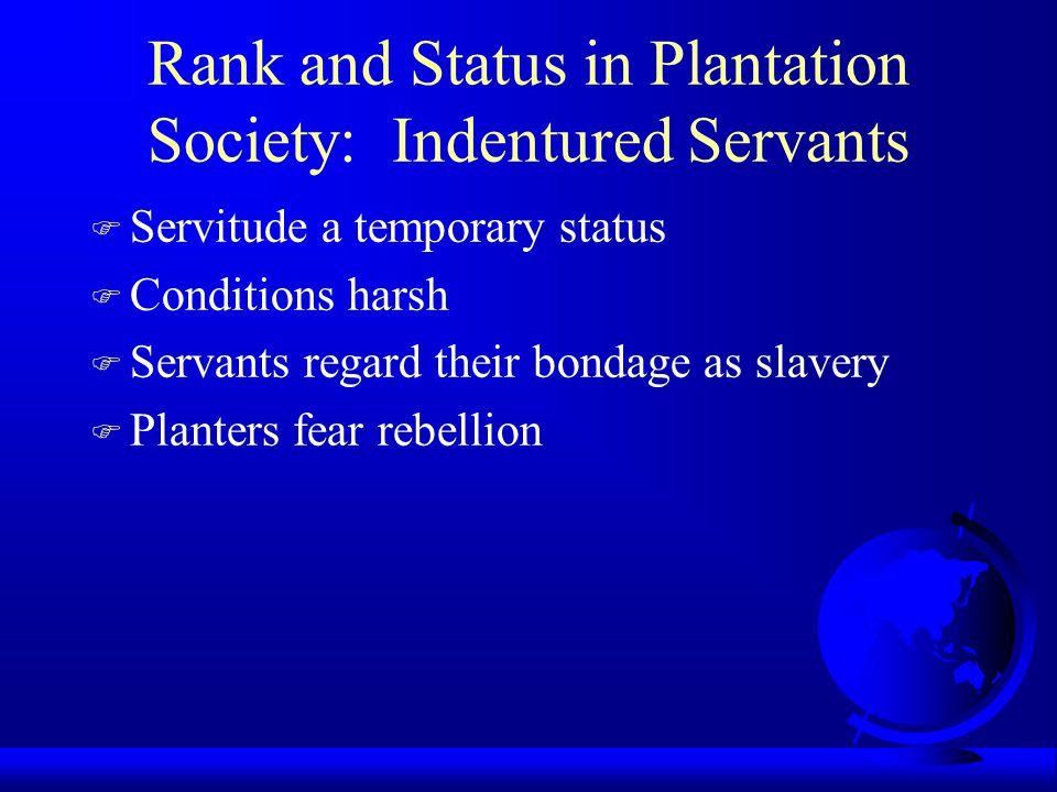 Rank and Status in Plantation Society: Indentured Servants F Servitude a temporary status F Conditions harsh F Servants regard their bondage as slaver