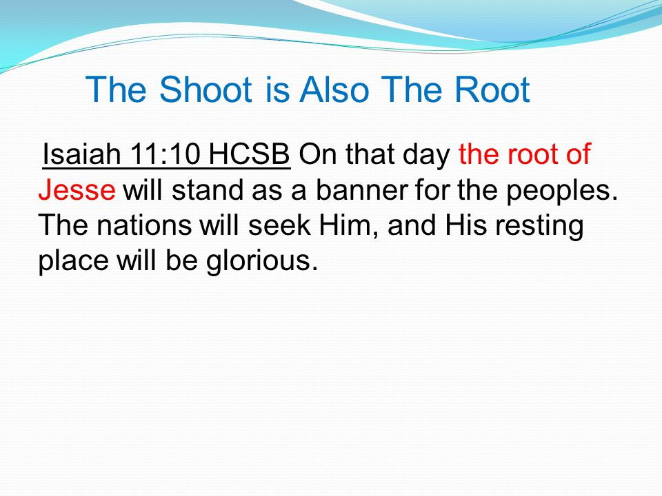 The Shoot is Also The Root Isaiah 11:10 HCSB On that day the root of Jesse will stand as a banner for the peoples.