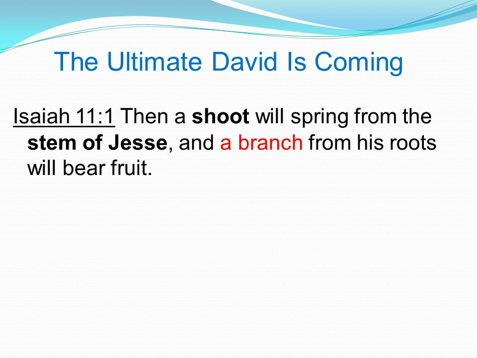The Ultimate David Is Coming Isaiah 11:1 Then a shoot will spring from the stem of Jesse, and a branch from his roots will bear fruit.