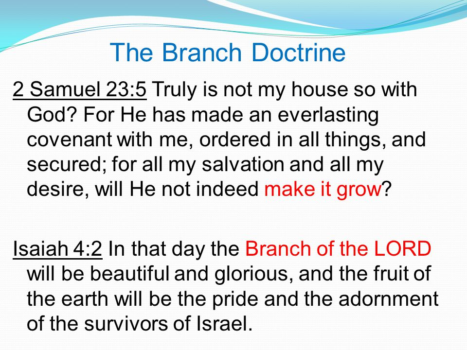 The Branch Doctrine 2 Samuel 23:5 Truly is not my house so with God.