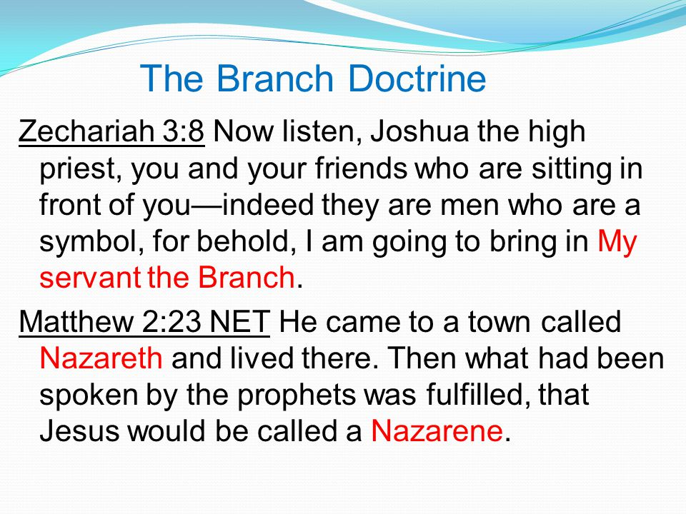 The Branch Doctrine Zechariah 3:8 Now listen, Joshua the high priest, you and your friends who are sitting in front of you—indeed they are men who are a symbol, for behold, I am going to bring in My servant the Branch.