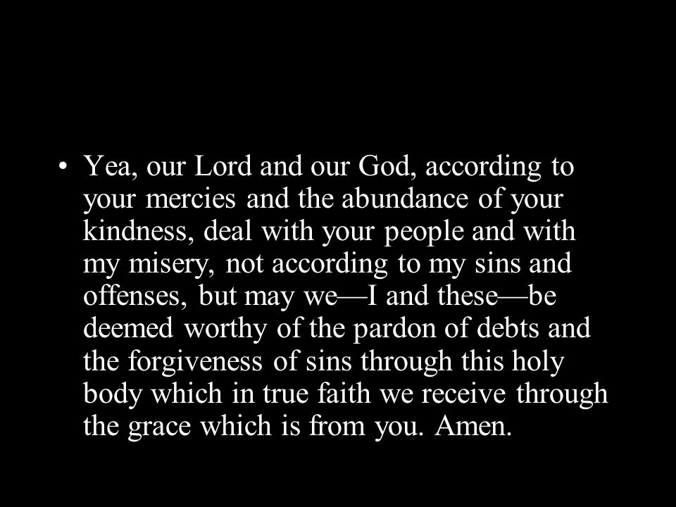 Yea, our Lord and our God, according to your mercies and the abundance of your kindness, deal with your people and with my misery, not according to my