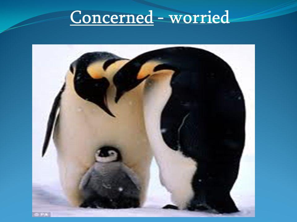 Concerned - worried