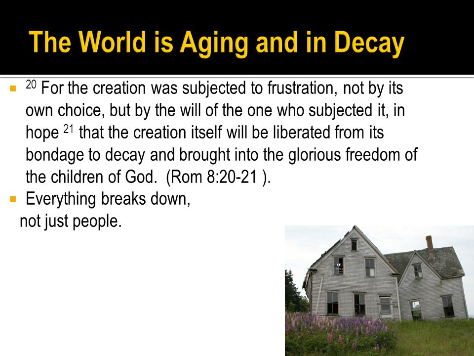  20 For the creation was subjected to frustration, not by its own choice, but by the will of the one who subjected it, in hope 21 that the creation itself will be liberated from its bondage to decay and brought into the glorious freedom of the children of God.