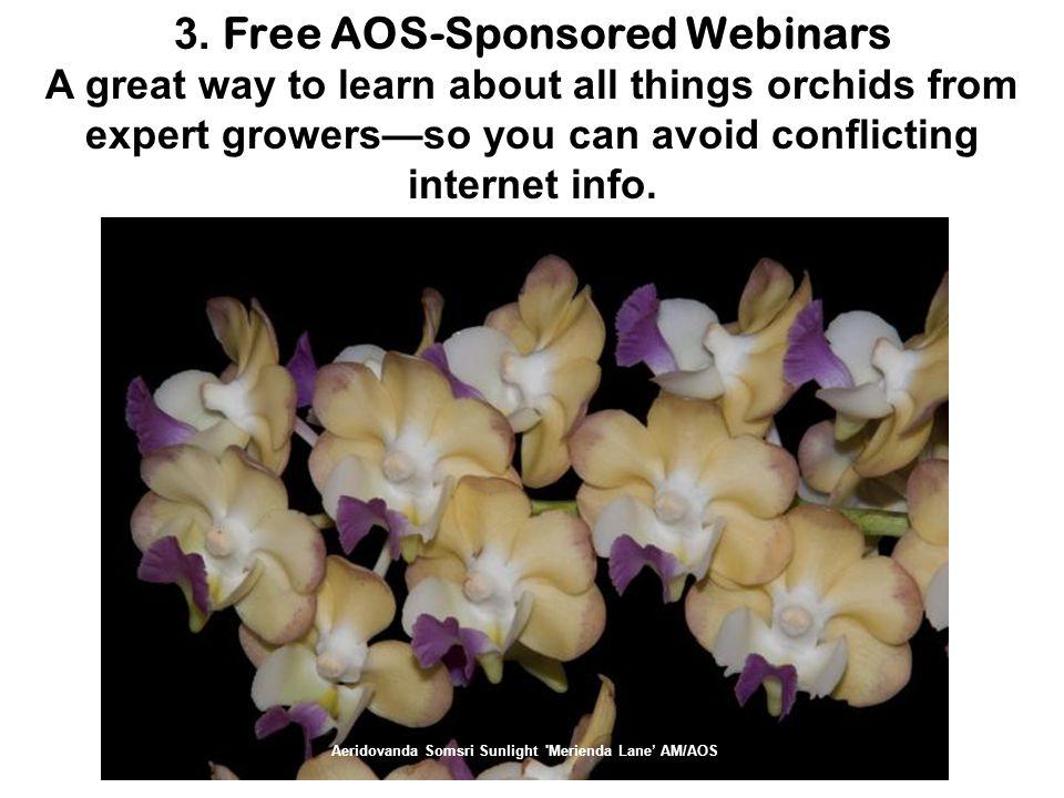 American Orchid Society at Fairchild Tropical Botanic Garden 10901 Old Cutler Road Coral Gables, FL 33156 Phalaenopsis Jose Carreras Amber HCC/AOS