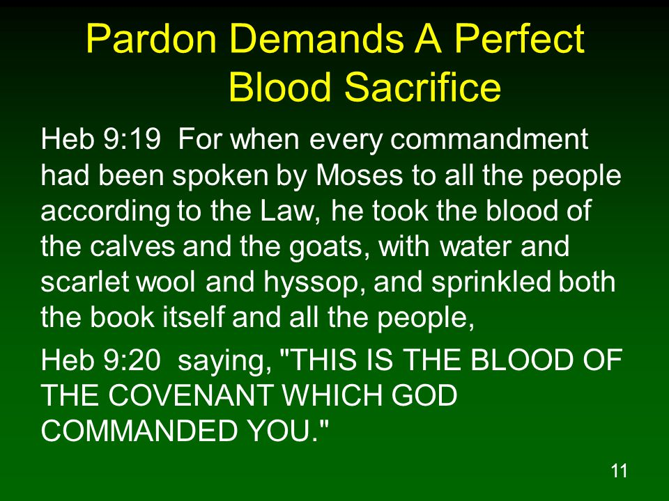 11 Pardon Demands A Perfect Blood Sacrifice Heb 9:19 For when every commandment had been spoken by Moses to all the people according to the Law, he to