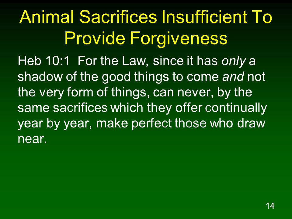 14 Animal Sacrifices Insufficient To Provide Forgiveness Heb 10:1 For the Law, since it has only a shadow of the good things to come and not the very form of things, can never, by the same sacrifices which they offer continually year by year, make perfect those who draw near.