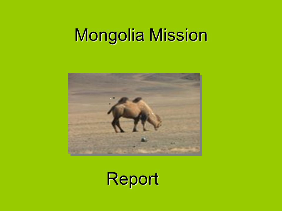 Mongolia Mission Report